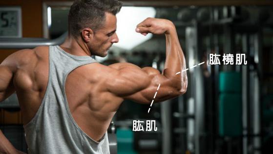 XUAN瘋運動教室/粗壯手臂/健身教練/運動